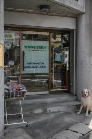 ドッグテール トリミング 犬の美容院 ペットホテル 尼崎